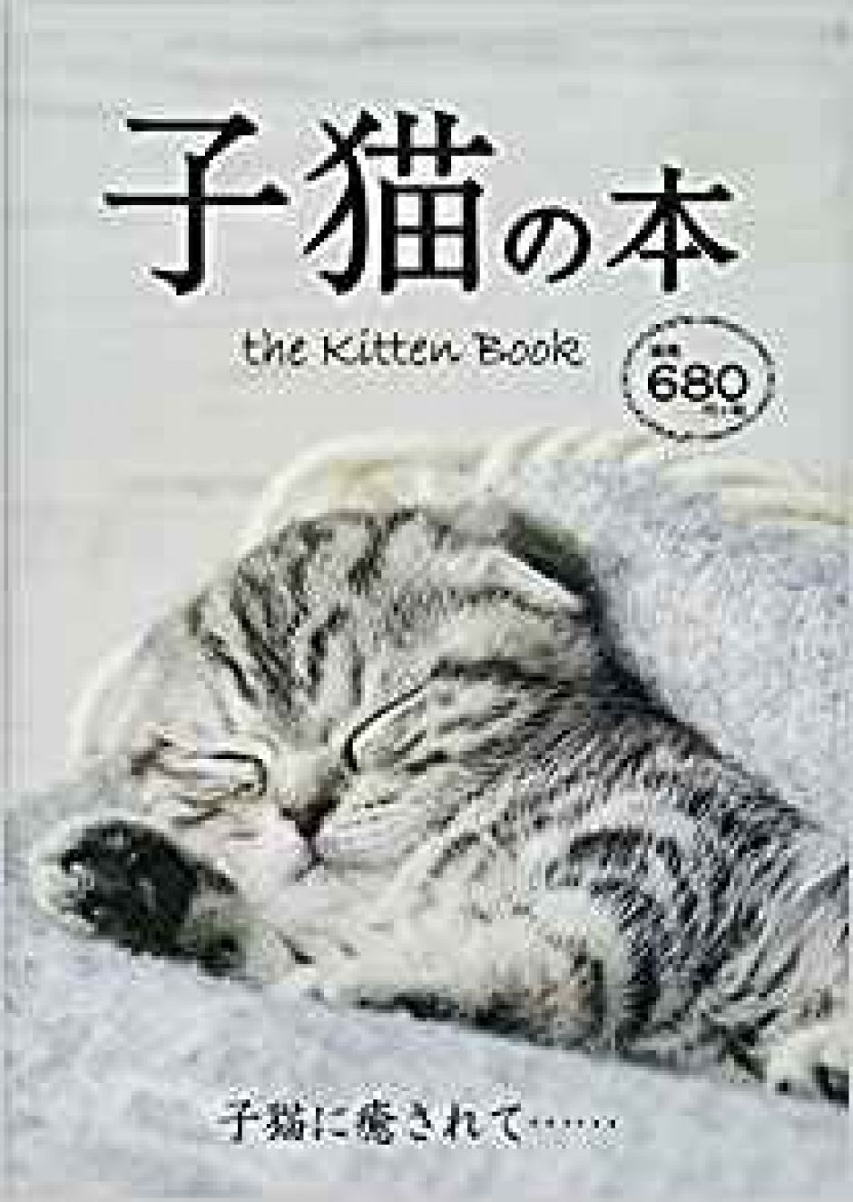 The Kitten Book